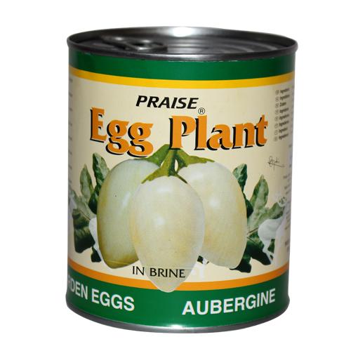 Egg Plant (Garden Eggs) in Brine – Praise Brand | Praise Export ...